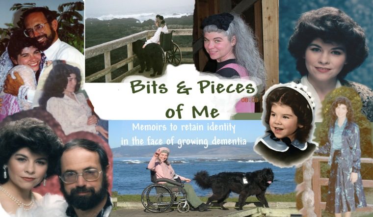 "Cover for ""Bits 'n Pieces of Me: Memoirs to retain identity in the face of growing dementia"""