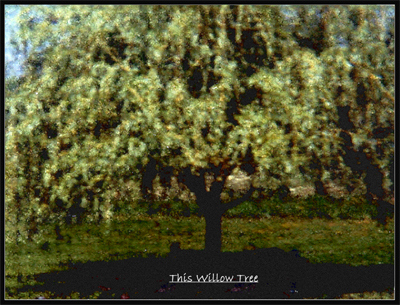 819BMPB 2001 Willow Tree only 4in100ppi