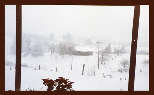 819BMPB 1988 Nov Closed Pic 4in125ppi
